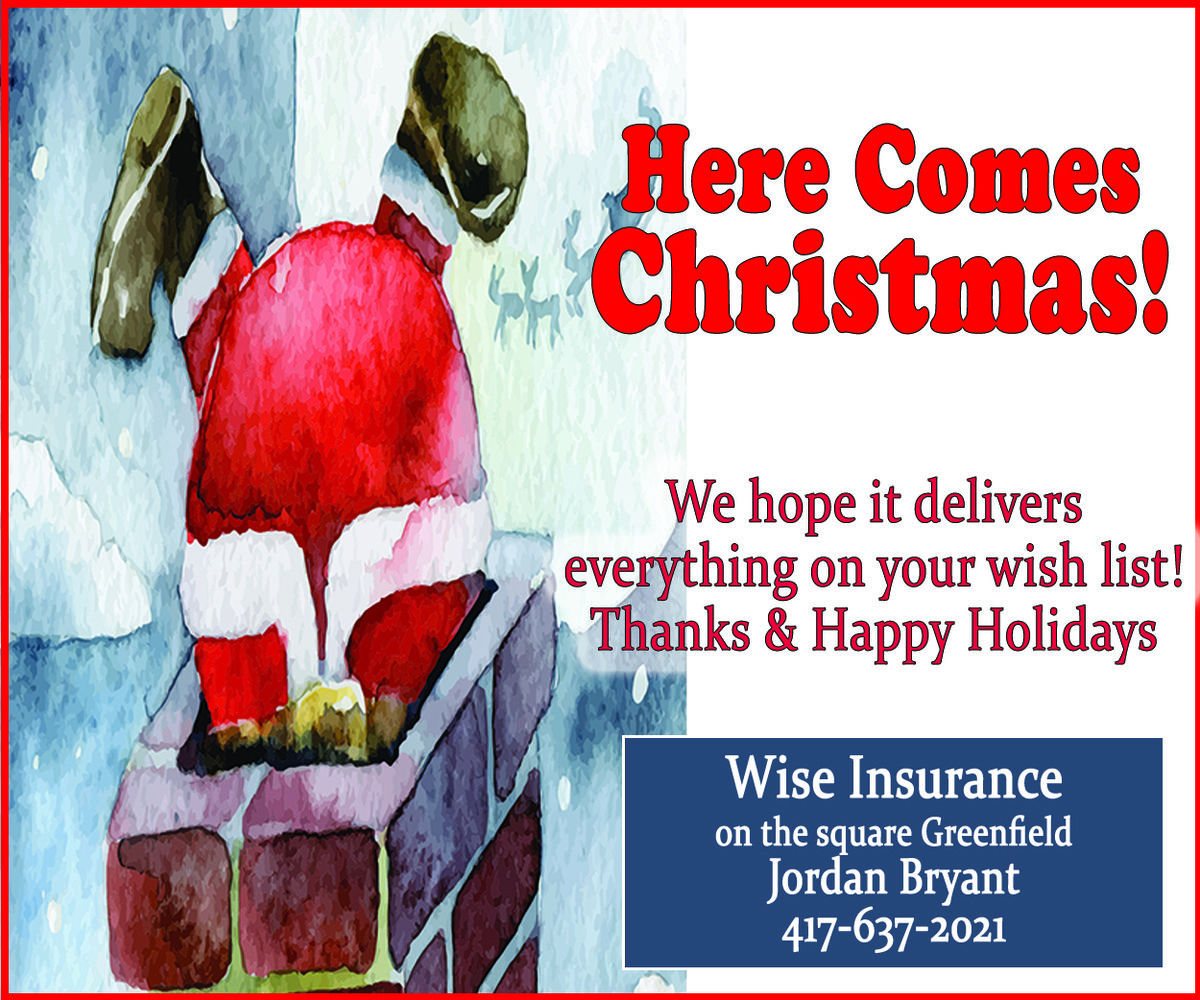 Wise Insurance Christmas Greetings 2019