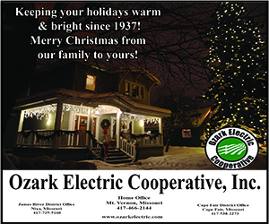 Ozark Electric Christmas Greetings 2019