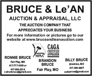 Bruce and Le'An Auction