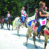 The ever popular horses are all decked out for 4th of July.