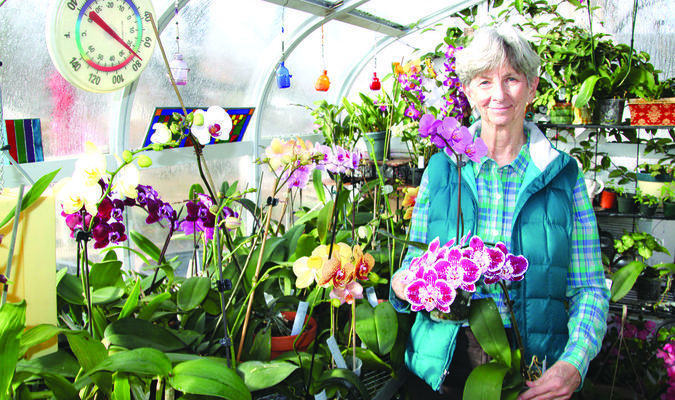 Dr. Beverly and a few of her orchids