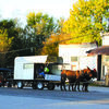 The wagon train is lined up and ready to go early Thursday, October 26, in Arcola, in preparation for the next leg of the trip to Stockton.