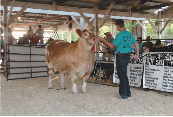 Austin Thomas shows his steer Puff at the  2017 Monroe County Fair. Puff was purchased by Kal Cleavinger of County Bank. Austin won the Steve Hillard Memorial Award this year.