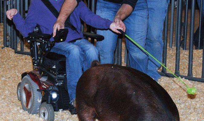 ROLLING RYLAN: With the help of his cousin Jace Jones, Rylan Jones of Rush Springs, who is diagnosed with cerebral palsy, shows his Duroc pig at the Marlow district pig show Saturday.