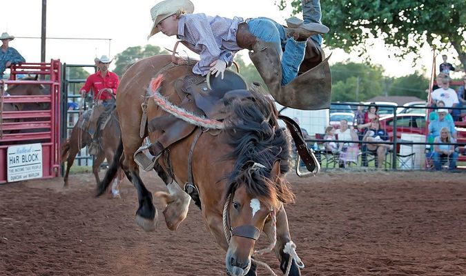 FLYING COWBOY: A young rider is thrown off a bucking bronco at the annual Duncan Noon Lions Club Rodeo at Claud Gill Arena in Duncan last year.