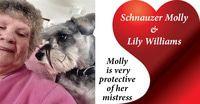Molly main
