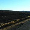 A Feb 26 fire burn several acres near the Midway area. Photo courtesy of WLCFPD.