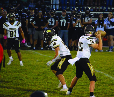 Drew Mallett #15 getting ready to pass, Robert Goehl #18 ready to block, and Brandon Holder #81 getting ready to receive the pass.