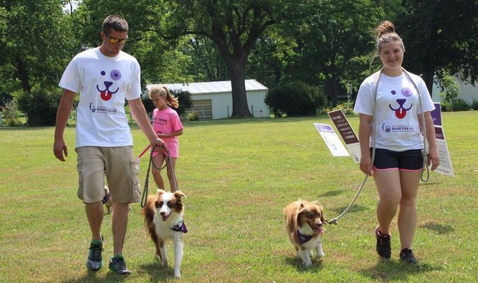 Scenes from Bark for Life