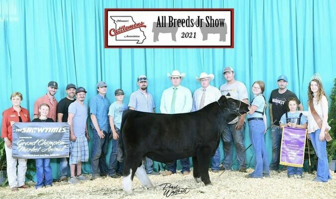 Hailey Eads traveled to the Missouri Cattleman's Association All Breeds Jr. Show in Sedalia, MO where she won several awards. They included Champion Overall Supreme Market Animal, Champion Simmental Steer, Champion Chianina Bull, Champion Chianina Cow/Calf Pair and Reserve Champion Chianina Heifer. Also, congratulations to Hailey Eads for 3rd Overall Showmanship!