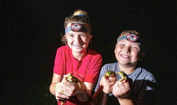 Frogging season begins June 30 at sunset and runs through Oct. 31. Bullfrogs and green frogs are legal game for those with valid permits, though children 15 and younger and adults 65-years and older are not required to have a permit.