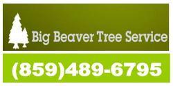 Website for Big Beaver Tree Service, Inc.