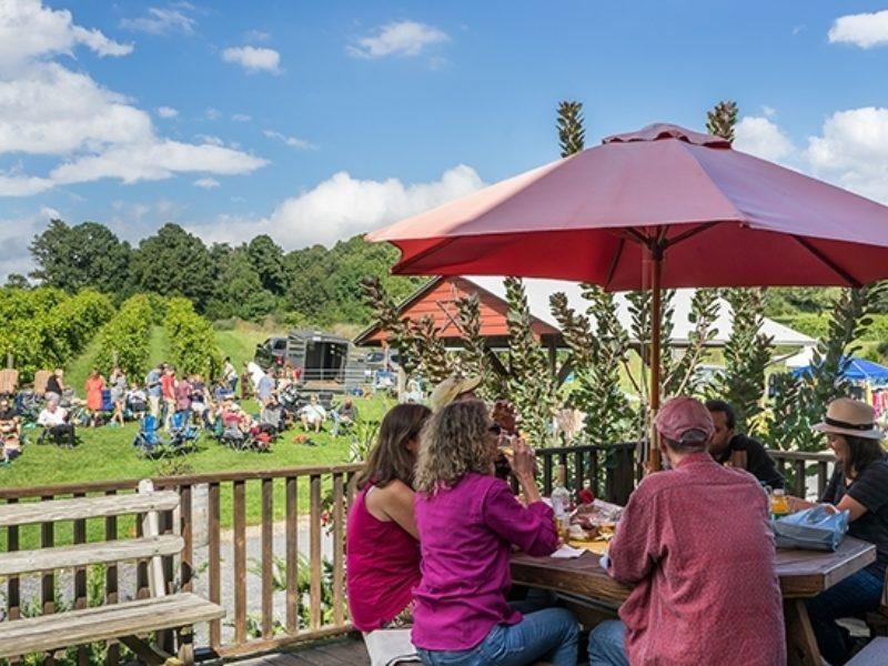Rockbridge Vineyard Raphine VA Wine Festival