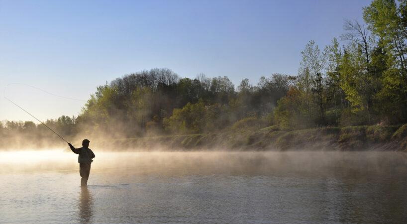 FishandPick fishing