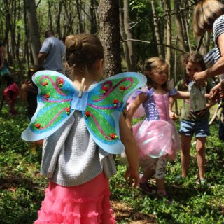 Boxerwood Fairy Forest Festival