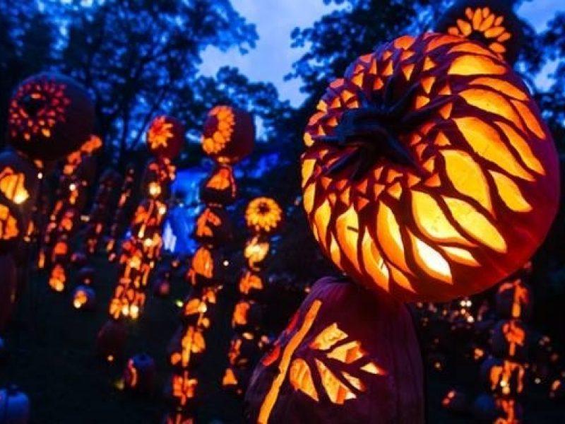 Pumkin Walk Pumpkin Totem