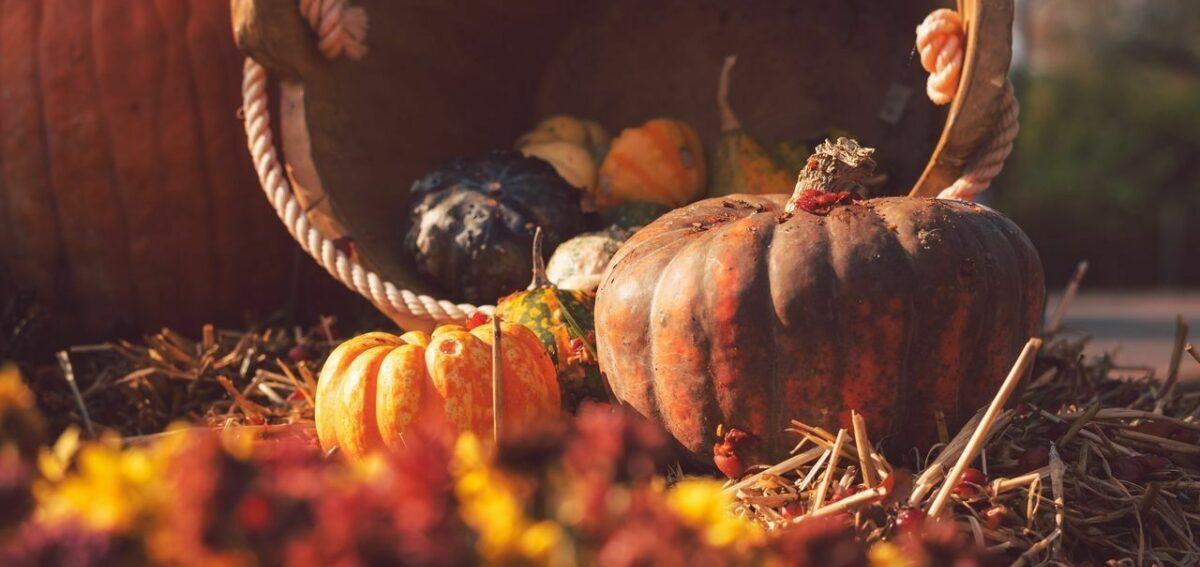 Pumpkin basket straw 147497 1280x720