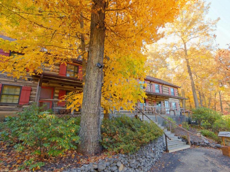 Lexington VA B&B Sugar Tree Inn
