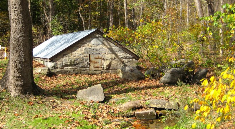 BrushyHills SpringHouse Peter