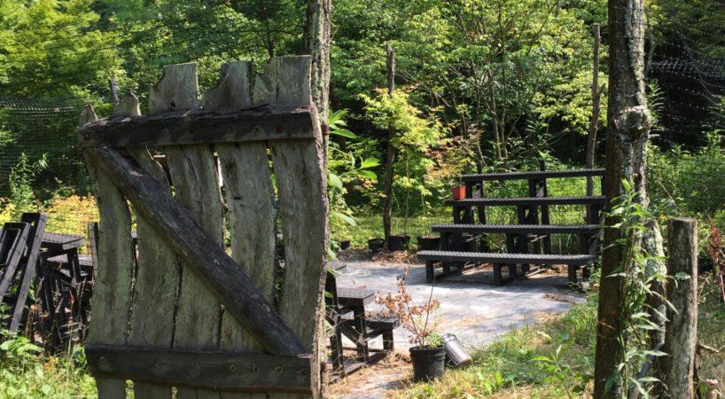 Hike Boxerwood Nature Center