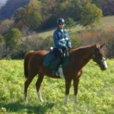Lexington VA Horseback Riding