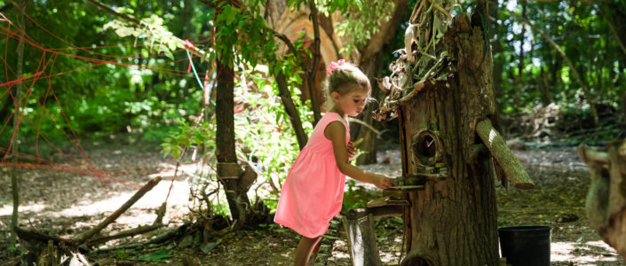 Fairy Forest at Boxerwood Nature Center and Woodland Garden.