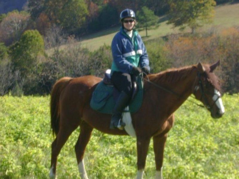 Lexington VA Horseback Riding