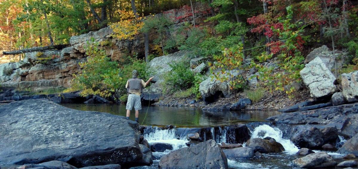 Hunting fishing lexington virginia for Hunt fish va