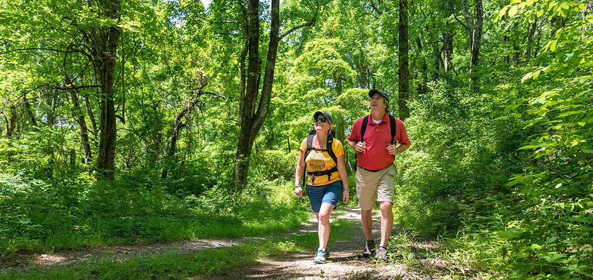 Hiking 170611 Weisler 3128