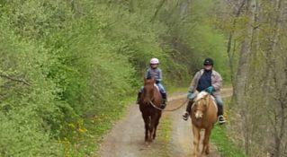Wind Horse Farm