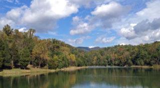 Lake Robertson