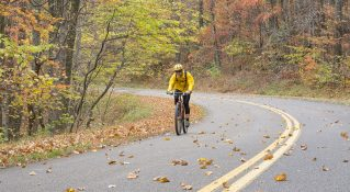 Buena Vista – Blue Ridge Parkway North