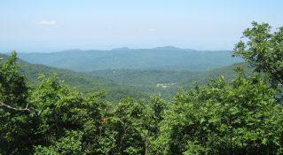 Cole Mountain