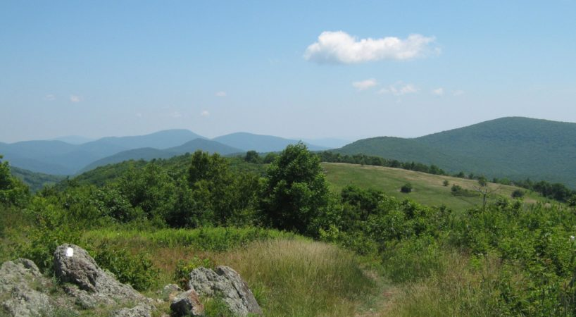 Hike ColdMtn 6