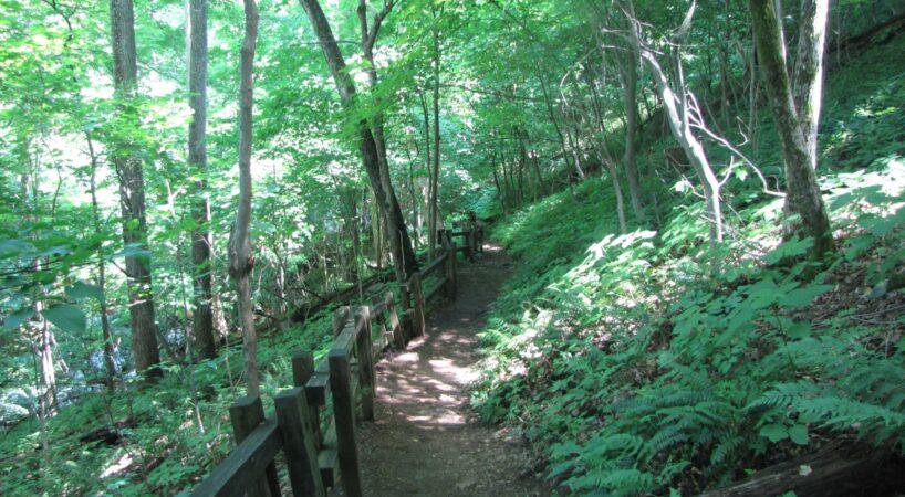Hike CrabtreeFalls 3