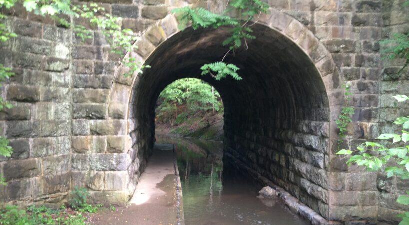 Hike WoodsCreekTrail 1