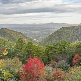Fall Leaf-Peeping Guide