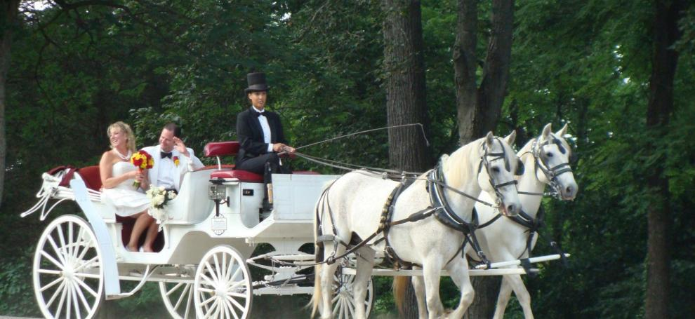 Lexington VA Wedding Carriage