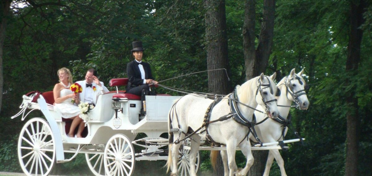 Lexington Carriage Company Wedding