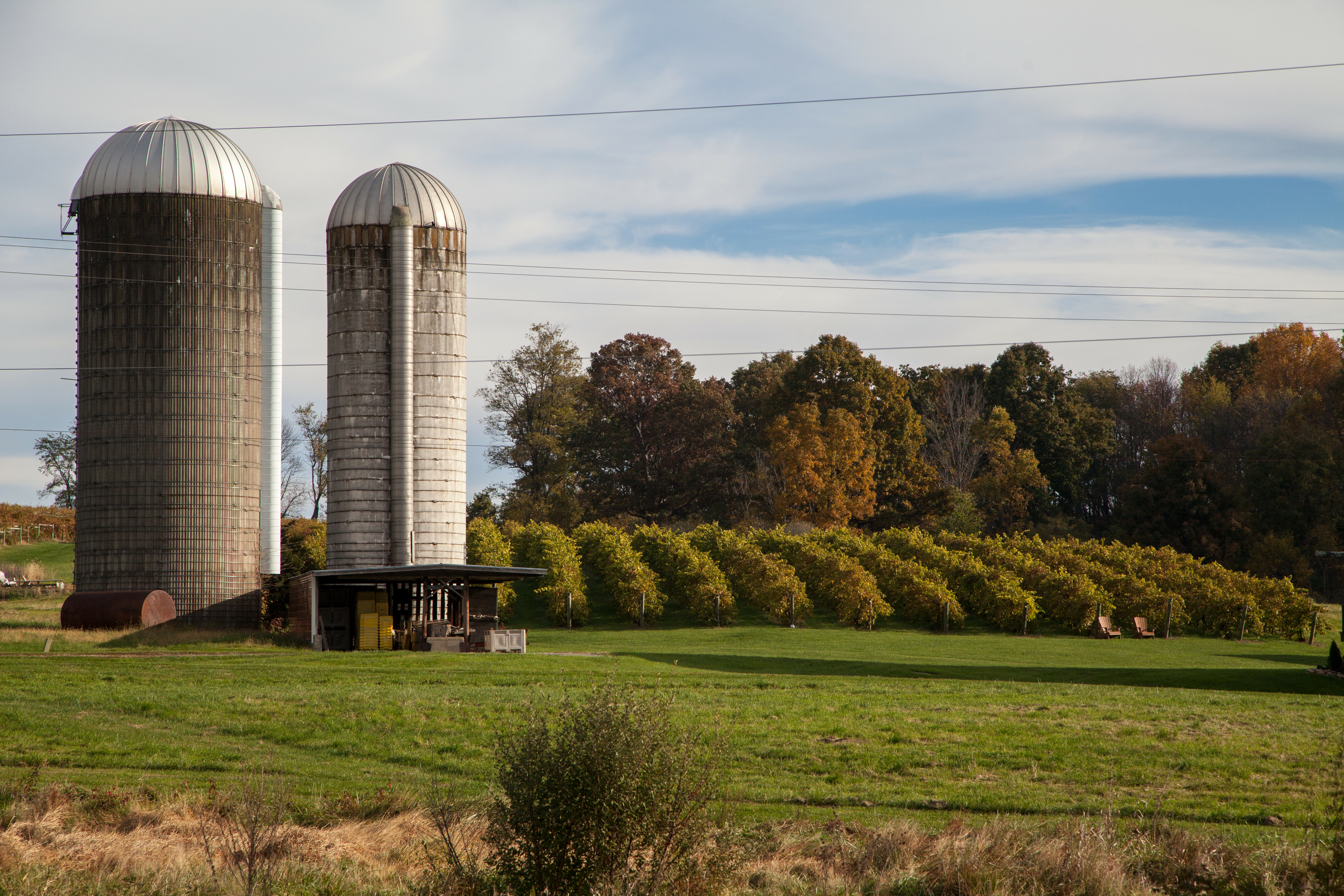 Rockbridge Vineyard. Photo by Sarah Hauser, Virginia Tourism Corporation