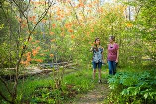 The north carolina arboretum footer2 local flavor avl visit explore recreation asheville