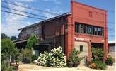 Thumb northlight studios logo local flavor avl visit explore art scene asheville