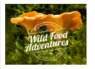 Thumb no taste like home wild food adventures logo local flavor avl visit explore food asheville