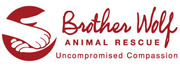 Thumb brother wolf animal rescue logo local flavor avl visit explore charity asheville