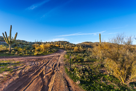 Black Canyon Trail in the Bradshaw Mountains, Arizona