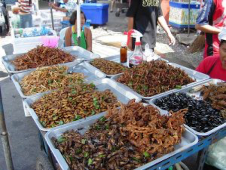 Market selling insects as food