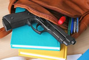 URGENT: School Safety Warnings