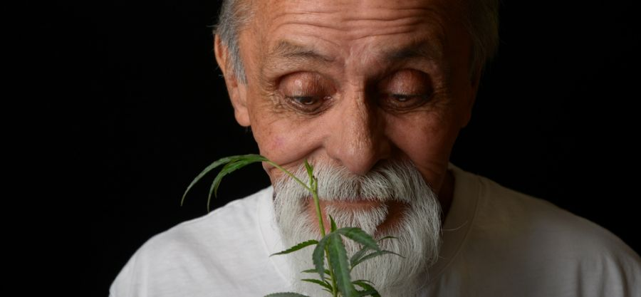 Retire Rich and Limber with Weed