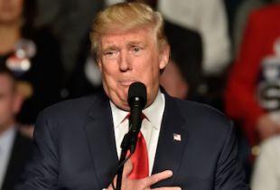 Goldman Sachs Predicts Trump Win
