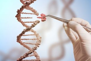Scientists Find the Happy Gene